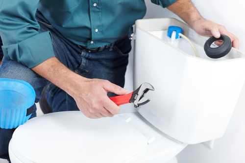 Call a professional for proper toilet maintenance and repair.