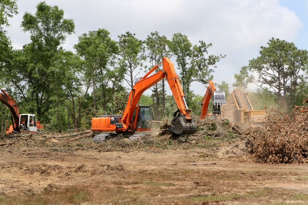 A land clearing company is an important contractor you need to hire before starting construction.